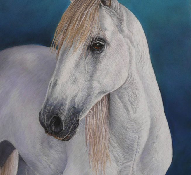 Majestic - Kerry Vaughan