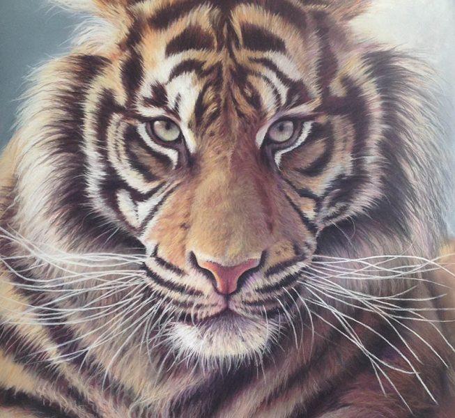 Tiger Eyes - Wendy Standen