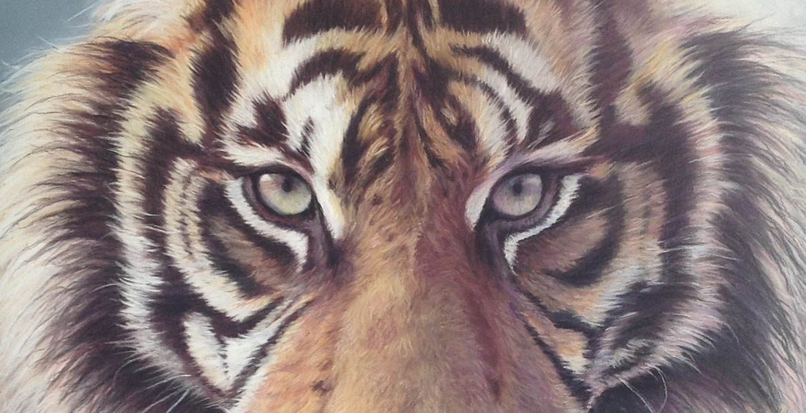 Tiger Eyes - Wendy Standen