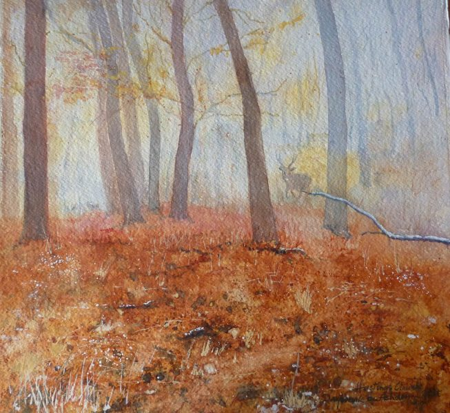 First Light on Ashdown Forest - Brian Hastings-Clough