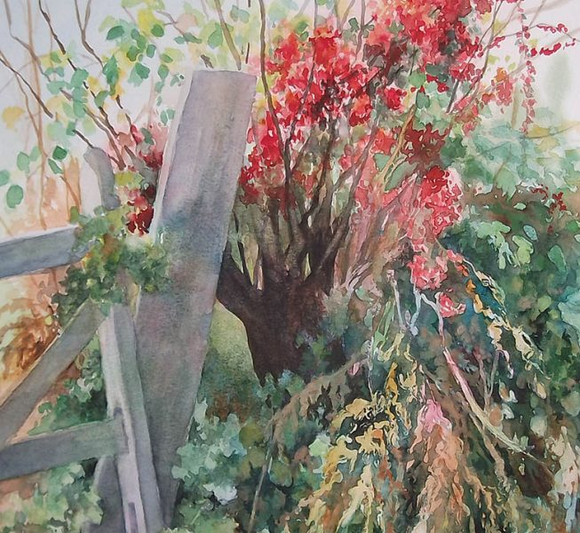 Hedgerow & Bryony - Jo Hudson
