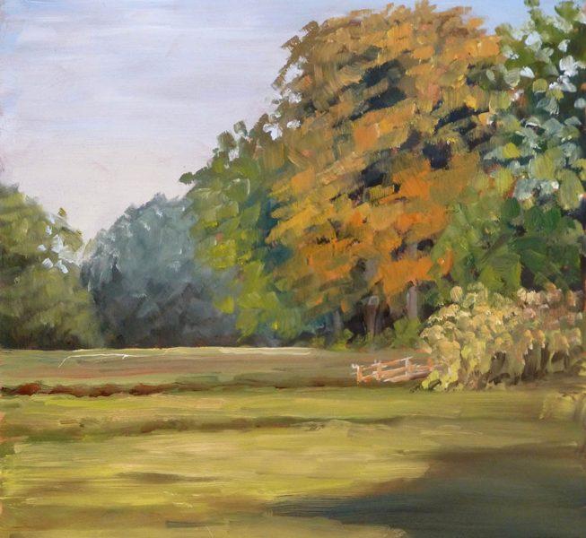 Sunshine After The Rain - Fiona Hooper